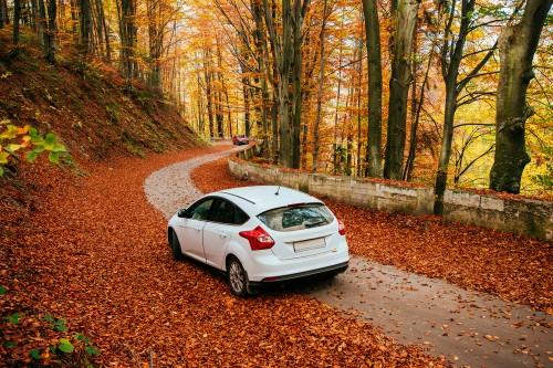 So machen Sie Ihr Auto fit für den Herbst