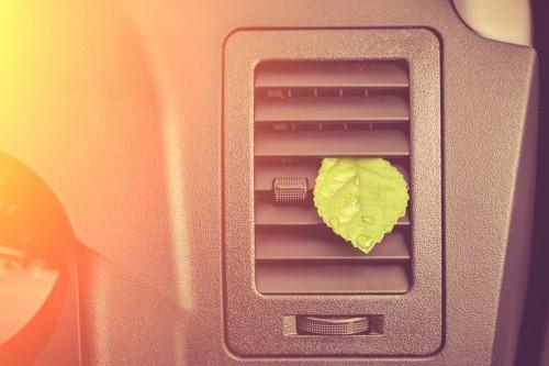 Sicher durch den Frühling: Wie oft sollte der Innenraumfilter gewechselt werden?